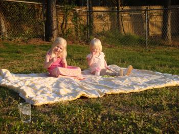picnicweb-17.jpg